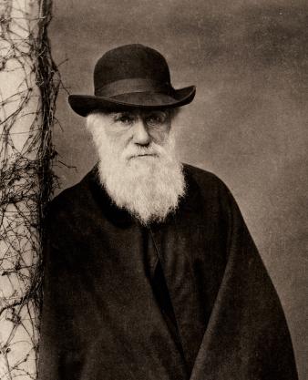 Darwin.900